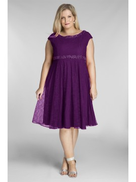 Plus Size Lace Dress with Beading in Violet