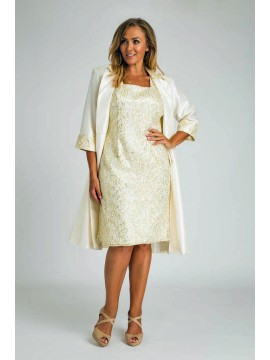 Stunning Sequin Lace Dress and Jacket 2 Piece Set in Ivory