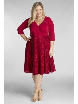 Plus Size Jersey Dress in Ruby Lace